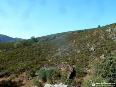 Atazar-Meandros Río Lozoya-Pontón de la Oliva-Senda Genaro GR300;fotos de san mamés parque natura